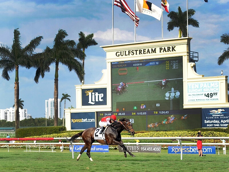Sir Ollie looks a standout at Gulfstream Park on Wednesday