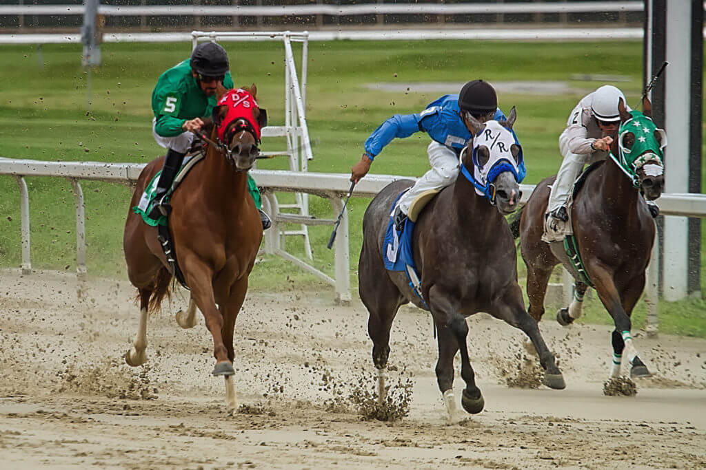 Fair Grounds hosts the Risen Star Stakes on Saturday