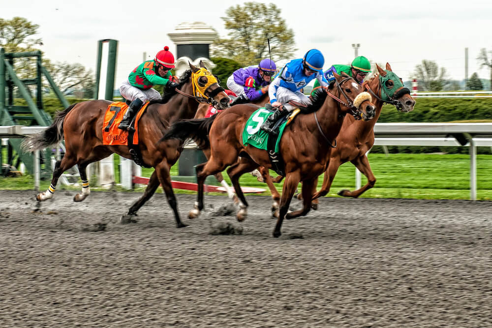 Golden Curl has a chance to add to his win tally at Keeneland on Wednesday.