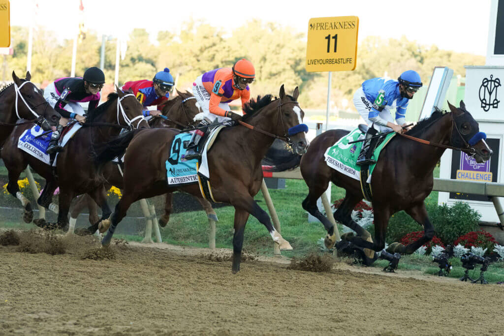 Horse Racing from Pimlico Race Course
