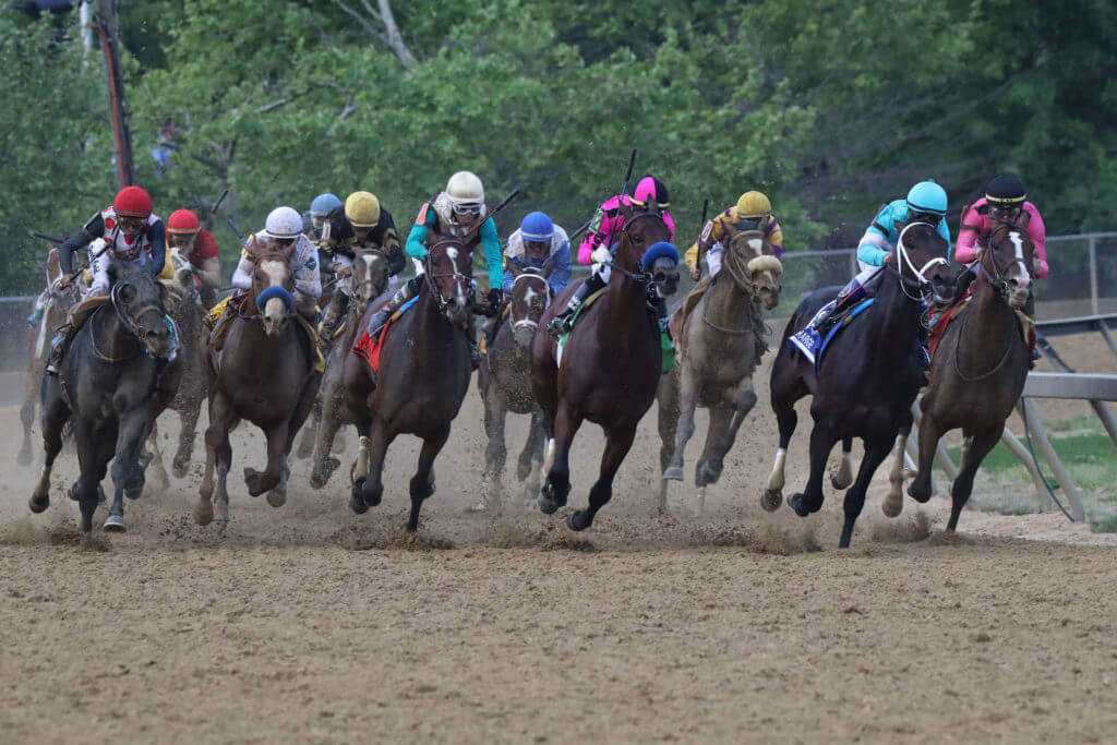 Horses round the fourth bend in the Preakness Stakes 2019