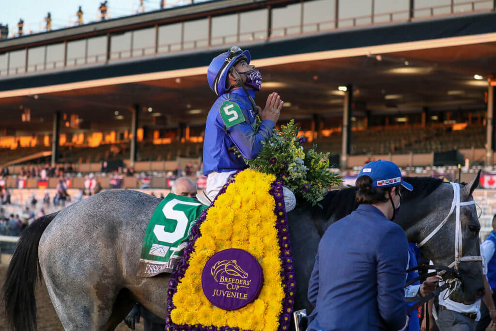 2021 Belmont Stakes odds